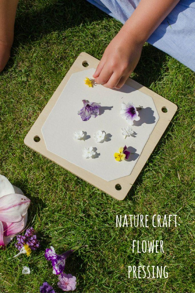 nature craft - flower pressing
