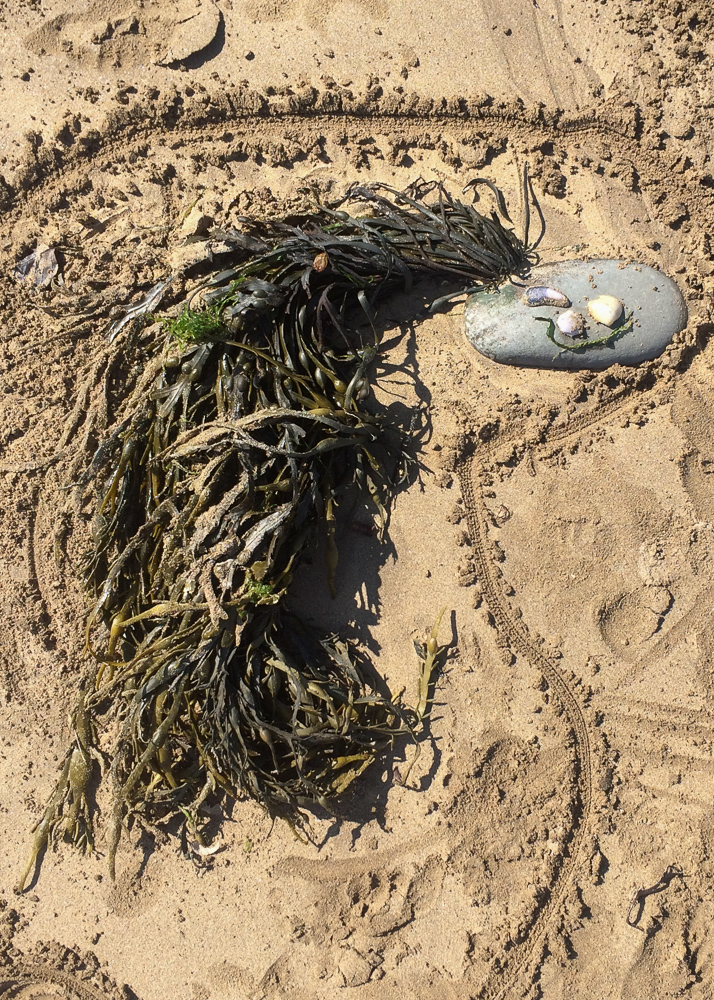 mermaid beach craft with natural materials