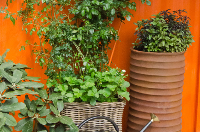 How to make the most of your patio space
