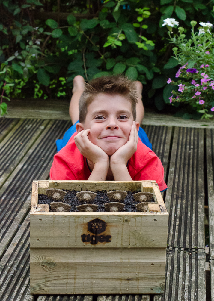 gardening with children for tiger sheds grow along