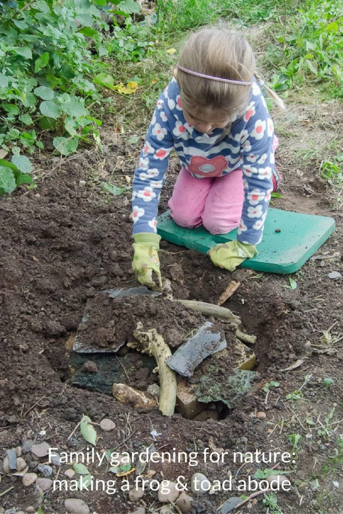 family gardening for nature making a frog and toad abode