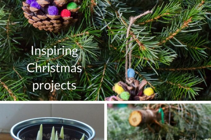 inspiring christmas projects to bring the outside into your home this holiday season