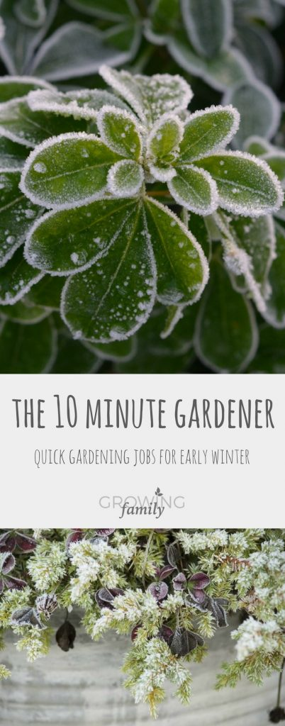 Only got 10 minutes to spare for gardening? You need the 10 minute gardener: check out these quick winter gardening jobs to tackle when time is tight.