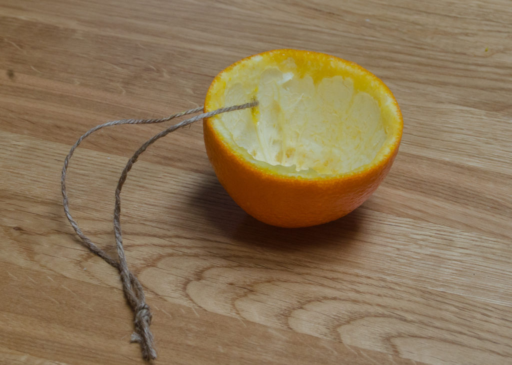 orange half with flesh removed and string attached