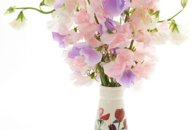 Win a limited edition Emma Bridgewater vase plus a bundle of Unwins Sweet Pea seeds