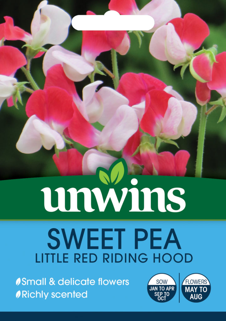 Unwins Sweet Pea Little Red Riding Hood