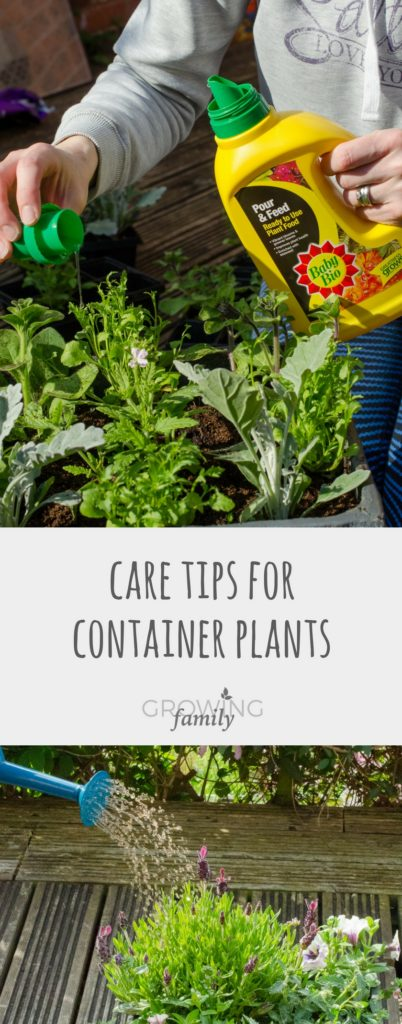 Not sure how to take care of your container plants? These plant care tips explain how to keep them happy, with the help of Baby Bio Pour & Feed plant food.