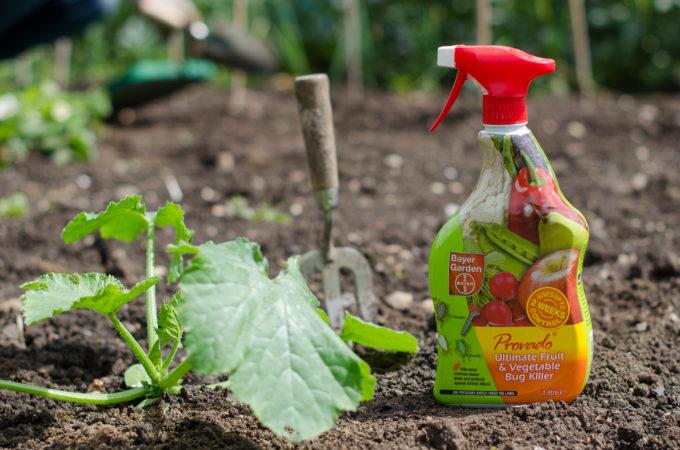 provado plant pest control