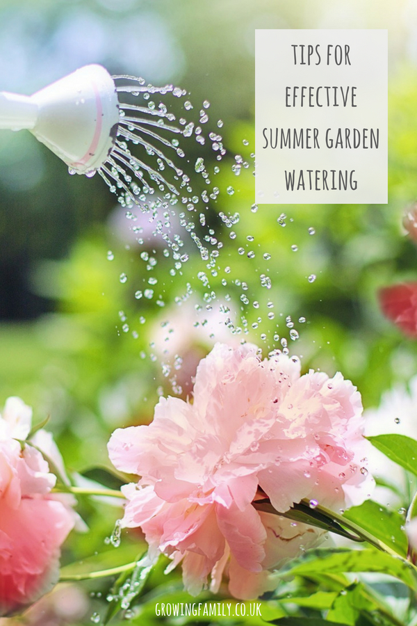 Struggling to stay on top of garden watering? Check out these tips on how to get garden watering right in summer - keep your plants happy and save time too!