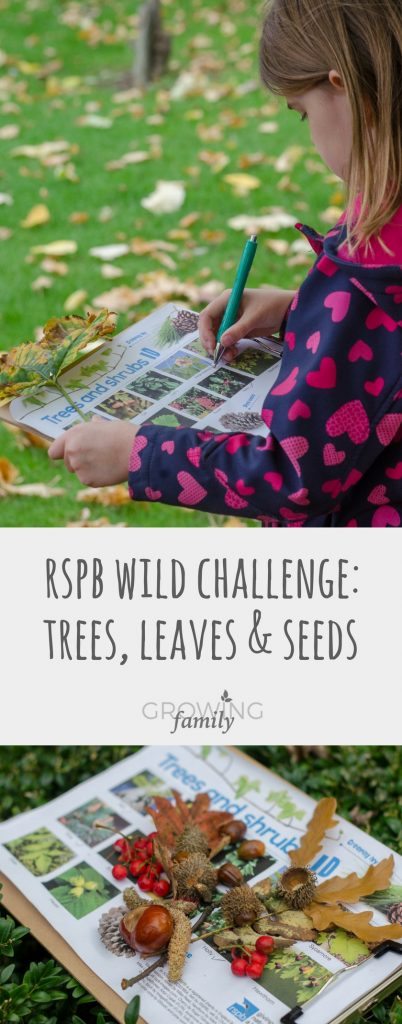 Looking for fun ways to explore nature with the kids in autumn? Check out this fun trees, leaves and seeds activity from RSPB Wild Challenge.