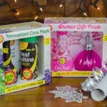 Exploring Baby Bio's Orchid and Houseplant gift packs, perfect gifts for indoor gardening fans. Plus the chance to win the range!