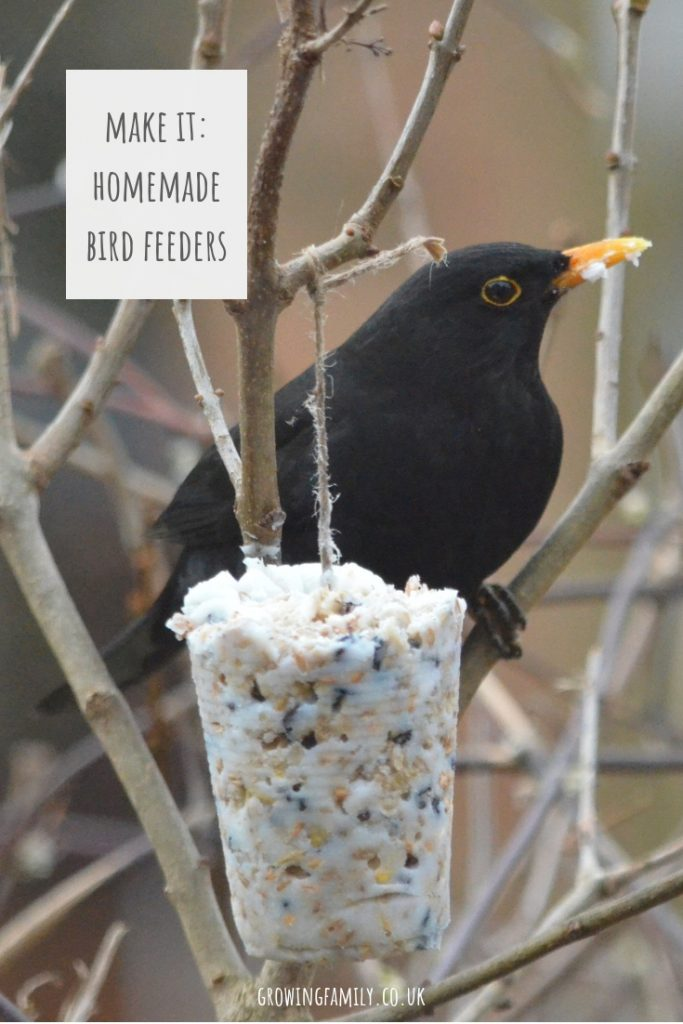 How to make your own homemade bird feeders, a simple, fun activity for children which will encourage wild birds to visit your garden!