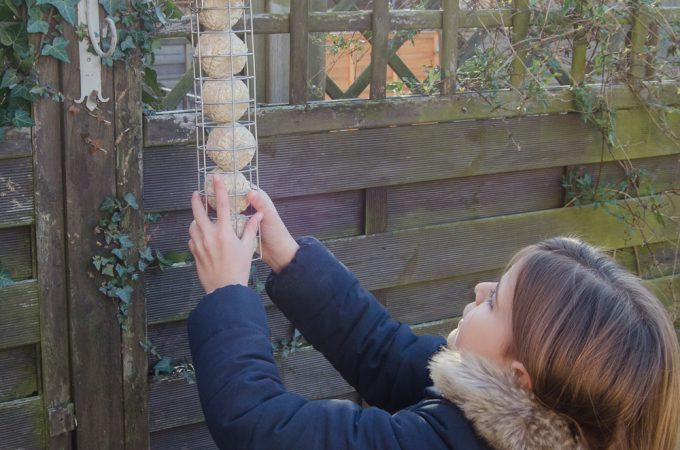 Hanging fat ball feeder