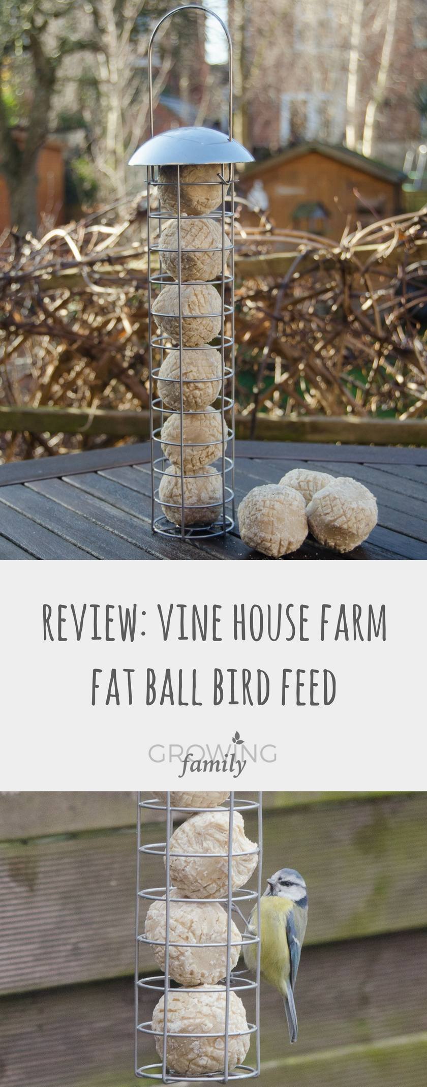 Review Vine House Farm Super Suet Fat Ball Bird Feed Growing Family