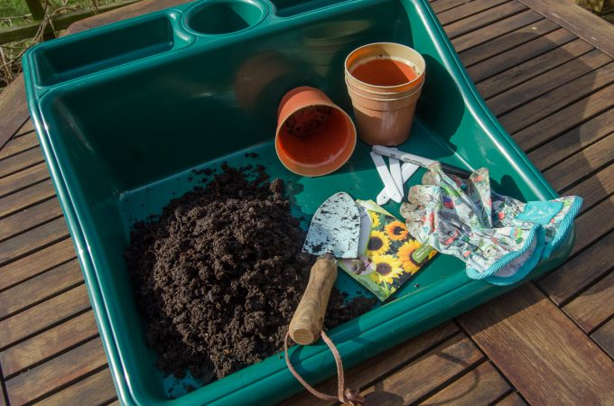 The kit you really need for growing seeds