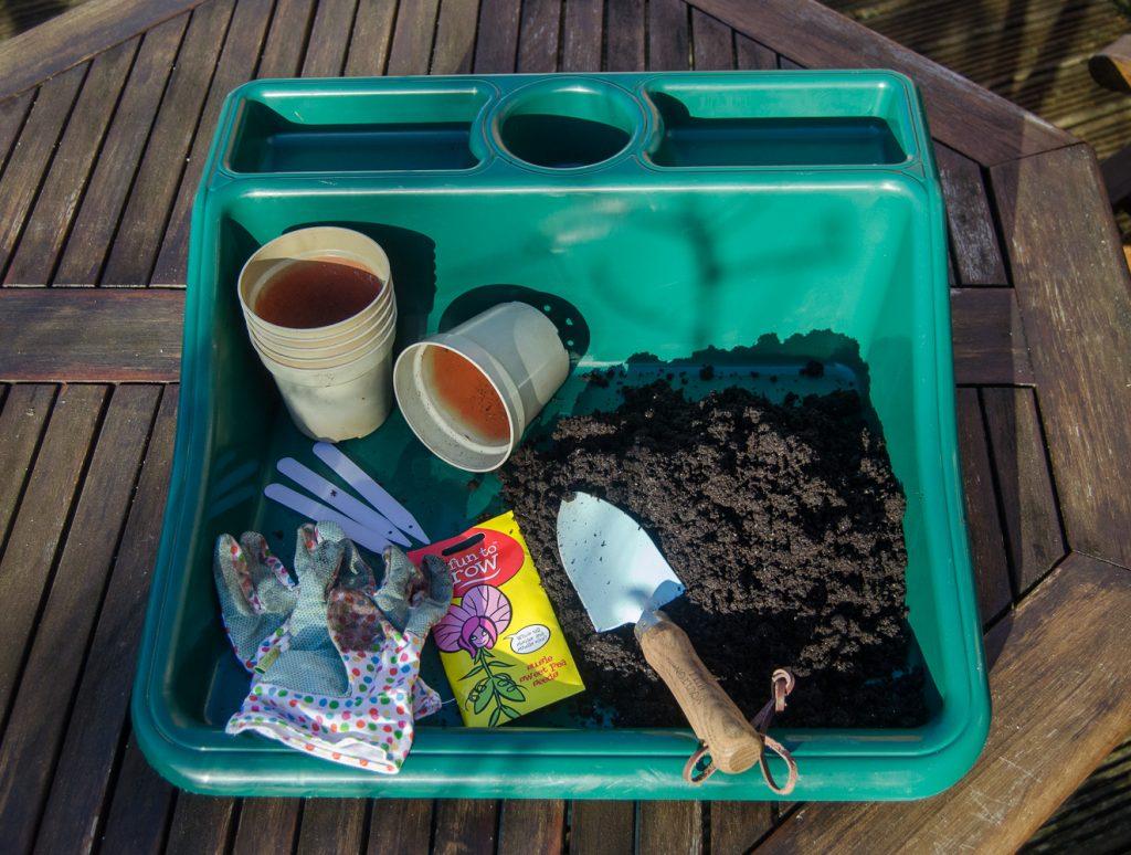 sowing sweet peas equipment