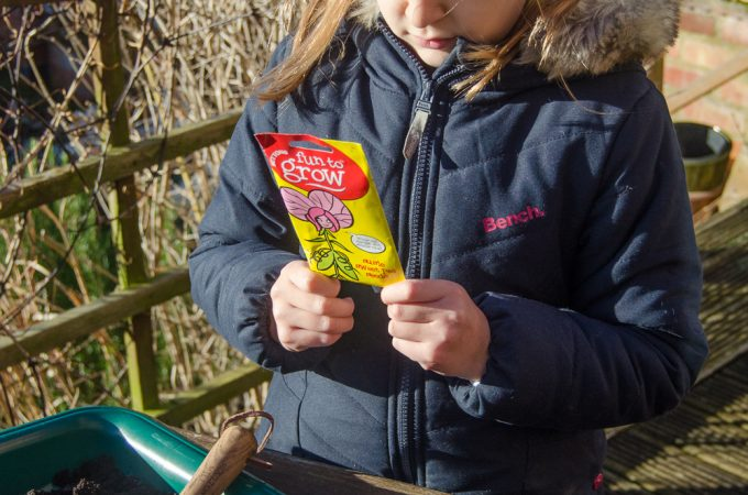 Gardening with children: seeds to sow in winter