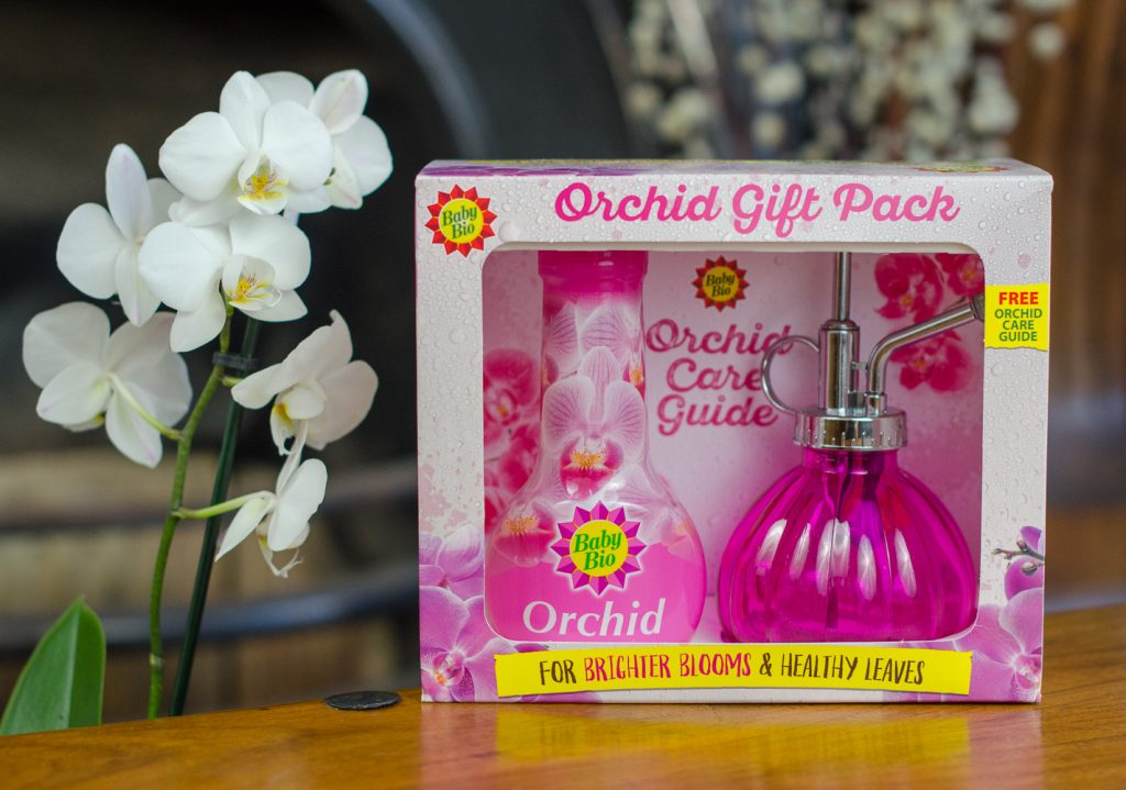 Baby Bio Orchid gift pack