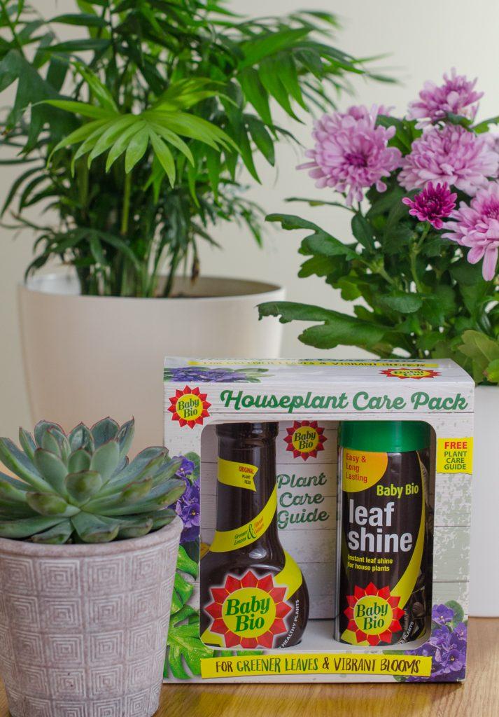 Baby Bio houseplant care pack