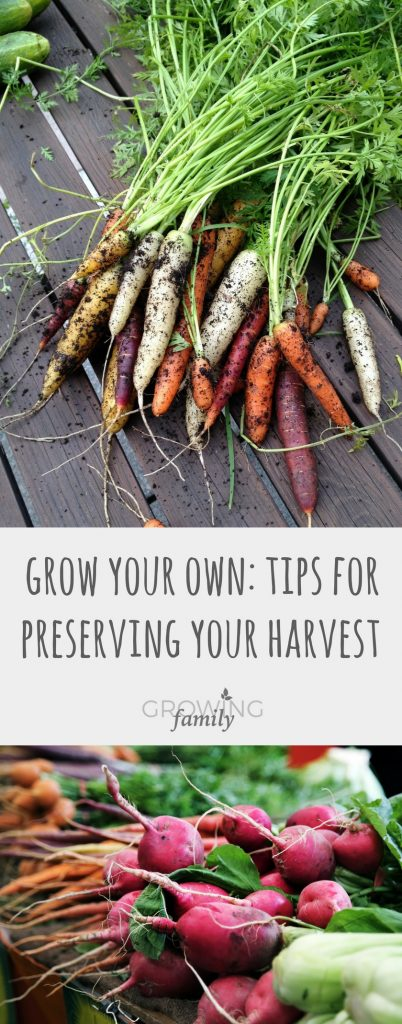 Whether you have an allotment, a small vegetable patch, or a couple of fruit trees in your conservatory, it's great to be able to preserve what you grow.  Check out these tips on preserving your harvest and getting the most out of your homegrown fruit and vegetables.