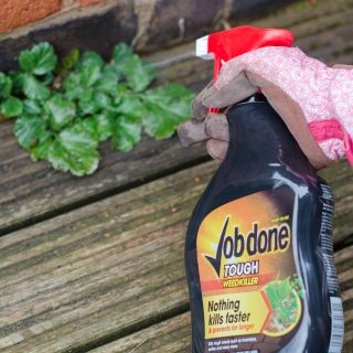 weed control with job done spray