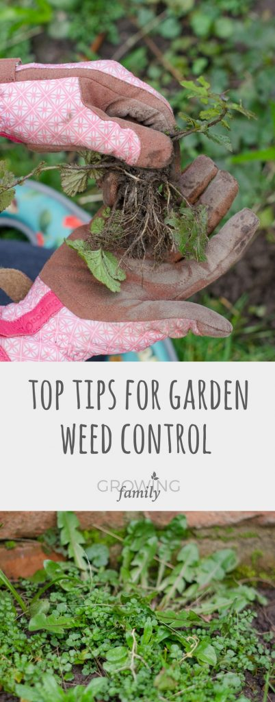 Struggling with garden weeds? These weed control tips explain how to prevent and deal with pesky weeds, saving you time and effort!