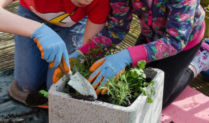 50 fun ideas to get kids gardening