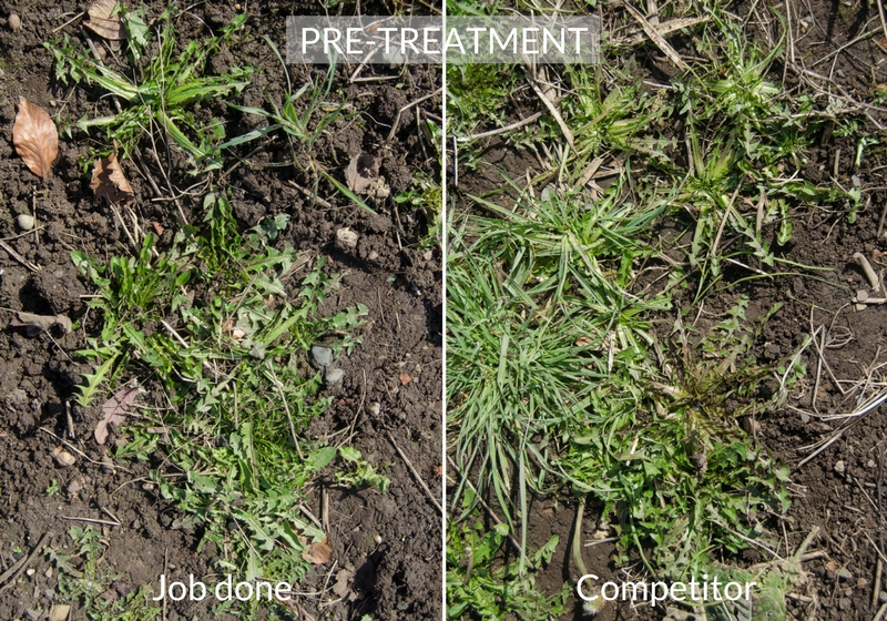 job done weedkiller comparison pre treatment