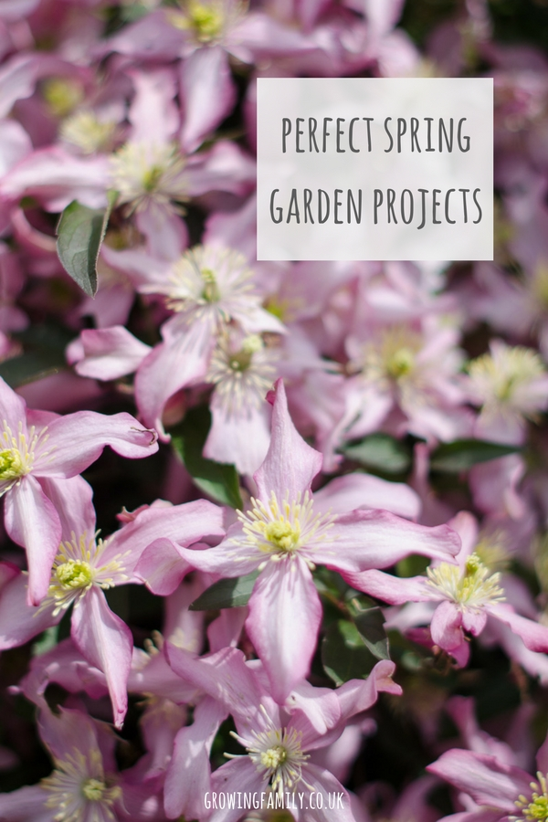 spring is a brilliant time of year to tackle new garden projects. Here are some spring garden project ideas to make your garden even better this year!