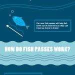 yorkshire water fish pass infographic