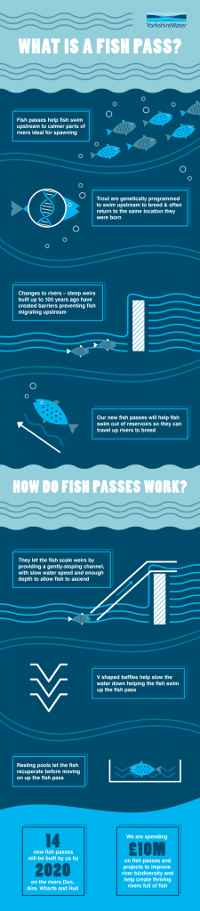 yorkshire water fish pass infographic