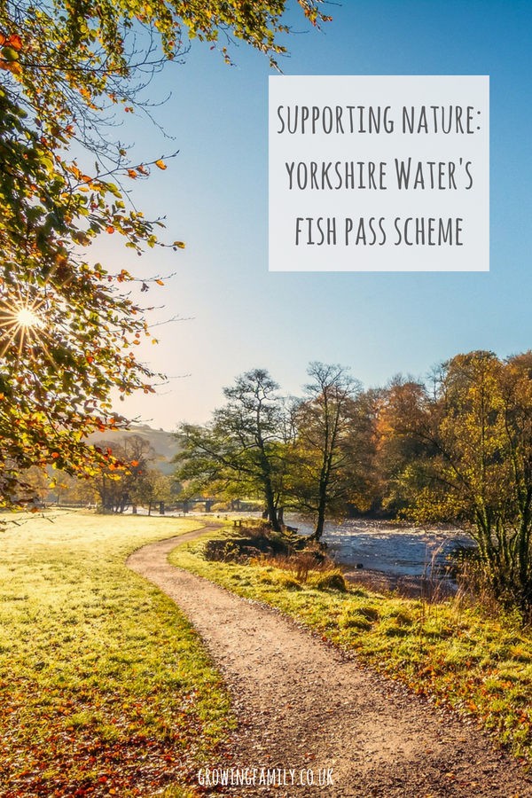Taking a look at the Fish Pass scheme from Yorkshire Water, designed to help improve fish preservation and river biodiversity.