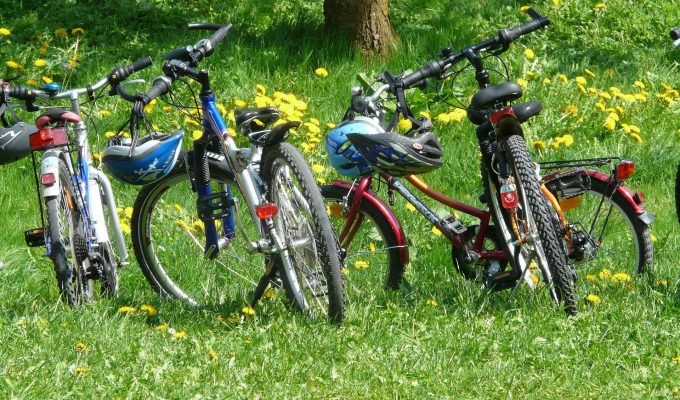 A Beginner's Guide to Mountain Biking with Halfords