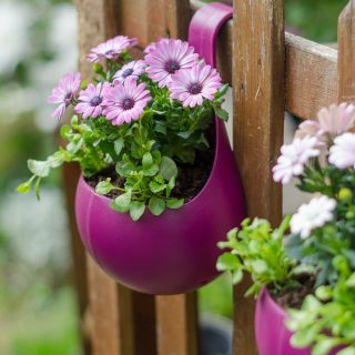 wilko hanging plant pot