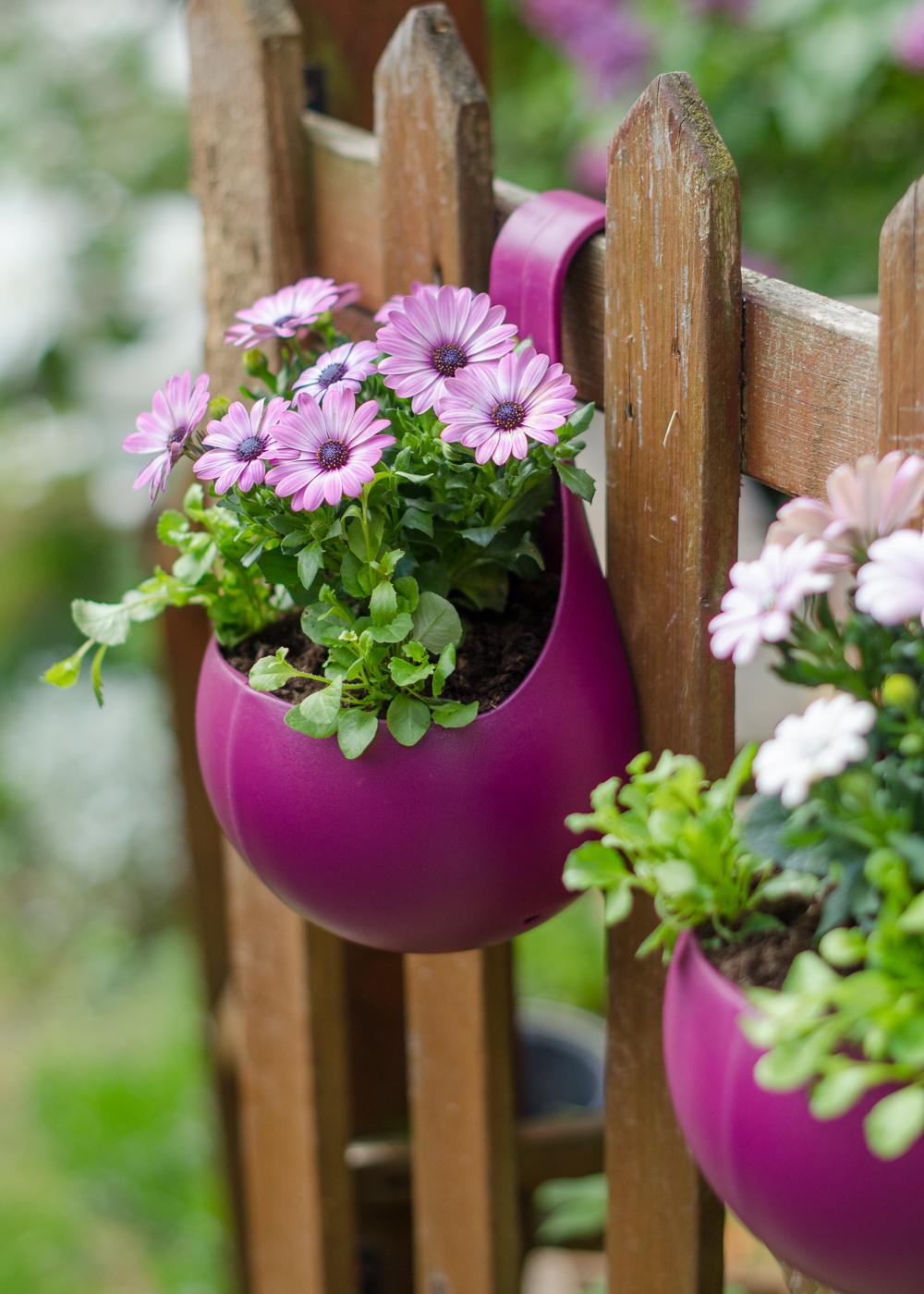 fence flower pot ideas
