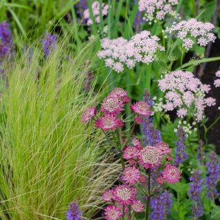 RHS Chatsworth Flower Show 2018 John Deere Garden