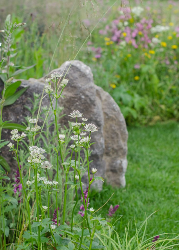 RHS Chatsworth Flower Show 2018 Macmillan Legacy Garden