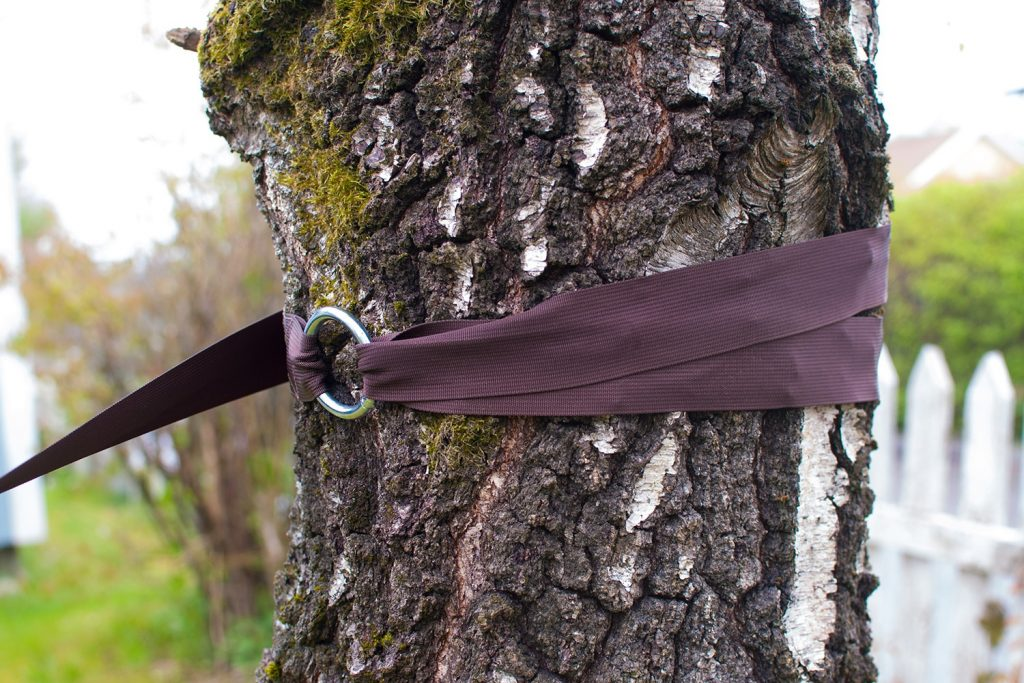 hammock tree bands