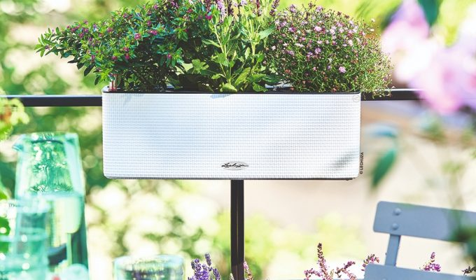 Clever container gardening with Lechuza planters