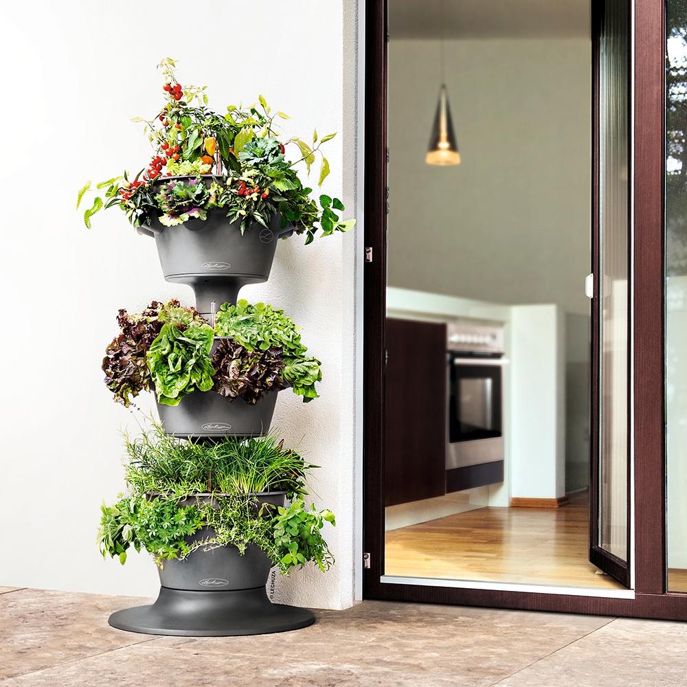 container gardening lechuza cascada planter
