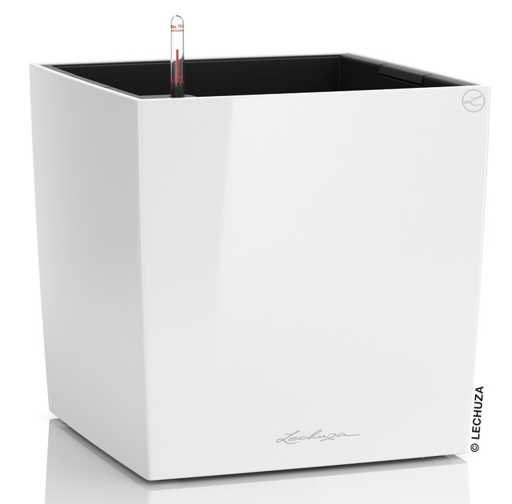 container gardening lechuza cube planter