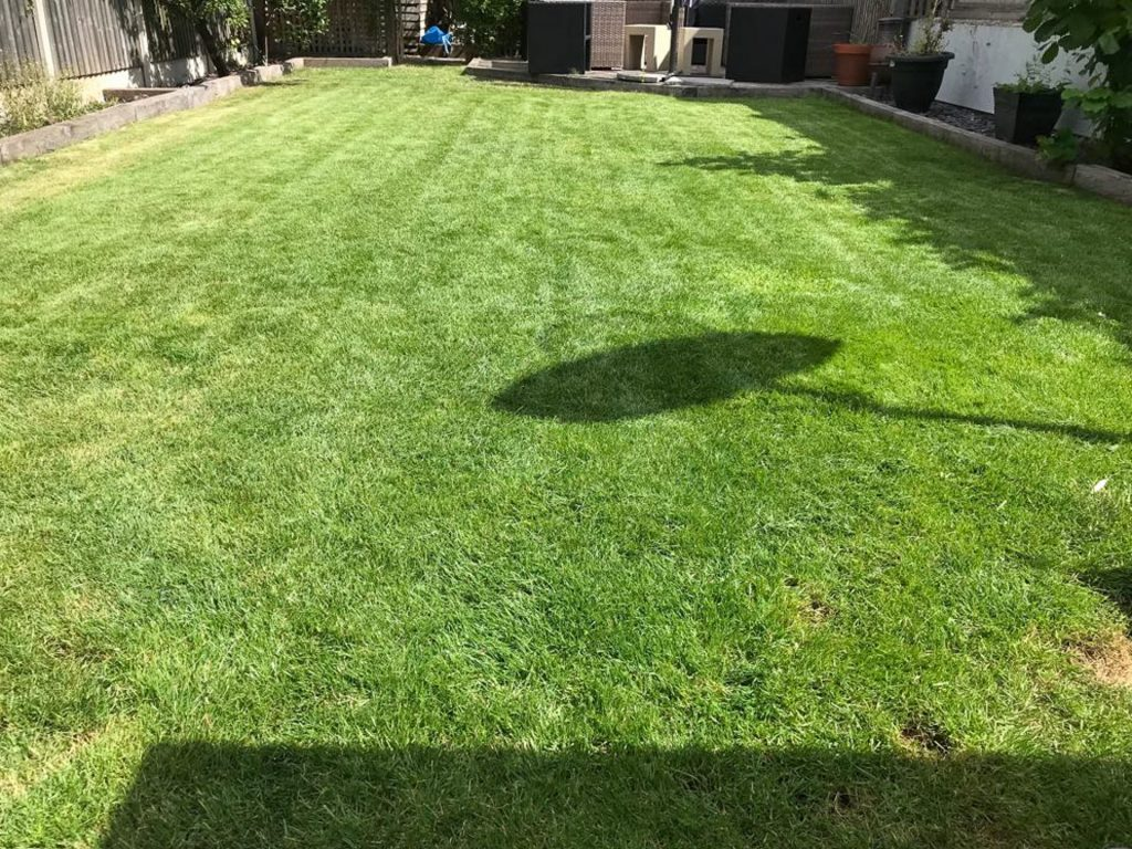 Stihl RMA339C lawn after