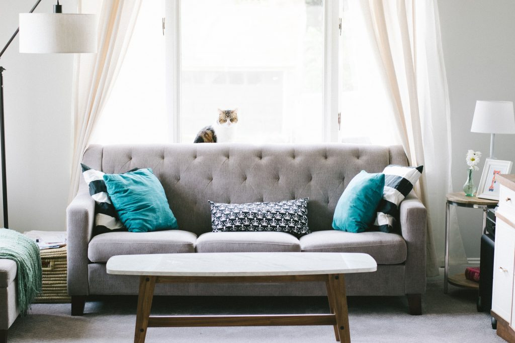 grey living room sofa with coffee table