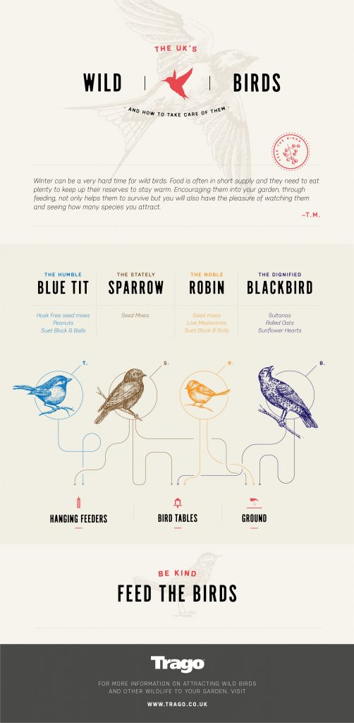 feeding garden birds in winter infographic