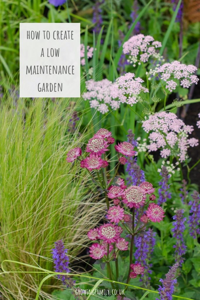 Finding time to maintain a garden all year round can be tricky.  Check out these quick and easy ways to create a low maintenance garden for the whole family.