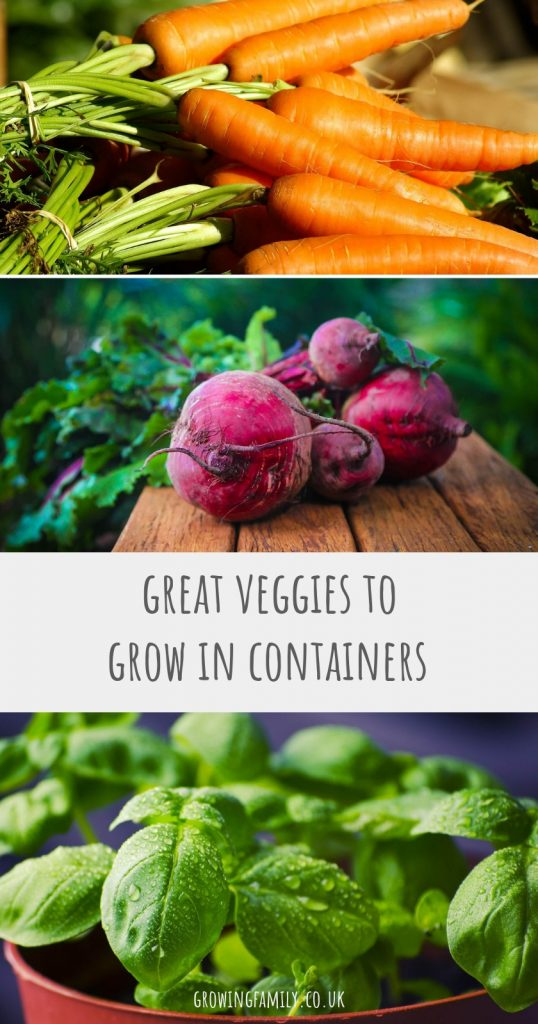 Short on space to grow vegetables? Lots of varieties are perfect for containers, check out this handy list of ideal container vegetables to plant in spring.
