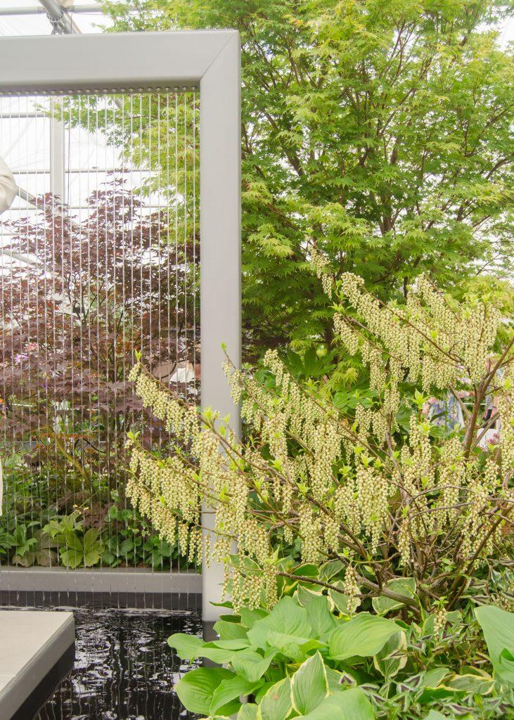 rhs chelsea flower show 2019 stihl hillier garden