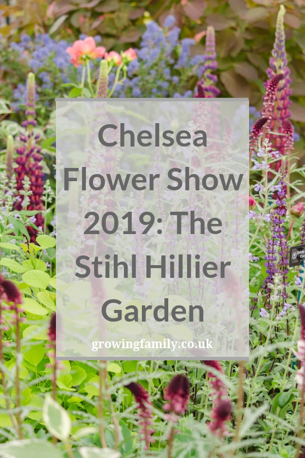 A behind-the-scenes look at the Stihl Hillier Garden at RHS Chelsea Flower Show 2019, designed by Lilly Gomm and mentored by Sarah Eberle. #gardening #rhschelsea #gardeningtips