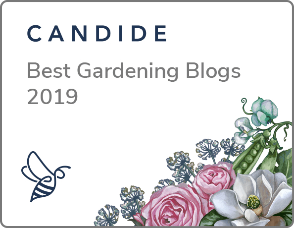 CandideTop10Badge2019