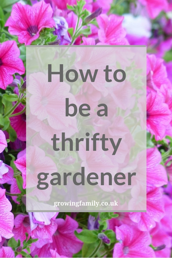 Gardening doesn't have to be an expensive hobby: here's how to be a thrifty gardener. Save money, avoid mistakes and still have a beautiful garden!